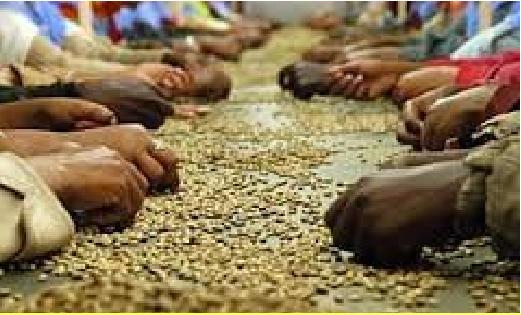 Mercoledì 23 Novembre: Storie e volti per un commercio equo e solidale